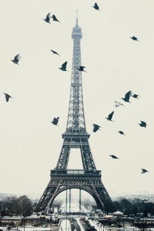 برج إيفل باريس صور خلفيات HD (4)