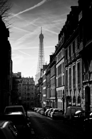 برج إيفل باريس (2)