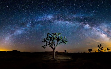خلفيات النجوم (1)