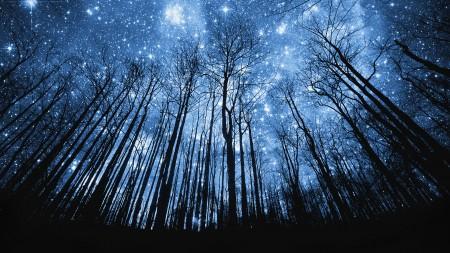 خلفيات نجوم HD (4)