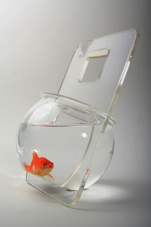 ديكورات وافكار الاسماك في الشقق والفلل (3)