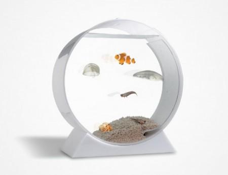 ديكورات وافكار الاسماك في الشقق والفلل (5)