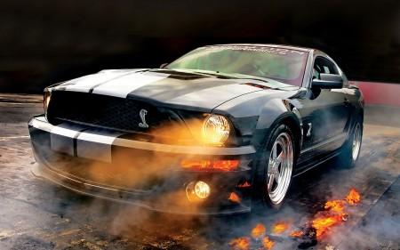 صور سيارات ثمينة (3)