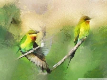 طيور جذابة (2)