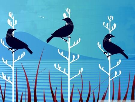 طيور وخلفيات جميلة (2)