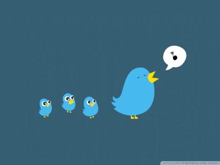 طيور وخلفيات جميلة (3)
