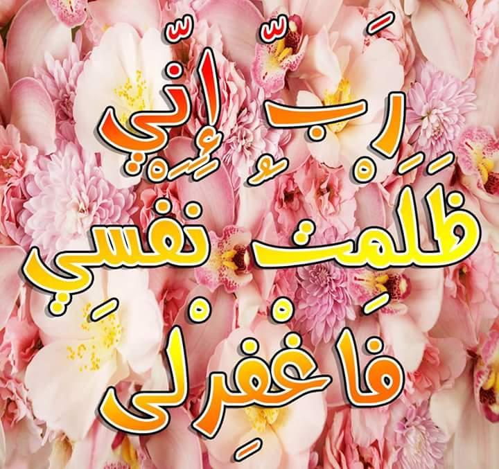صور اسلامية جديدة  (4)