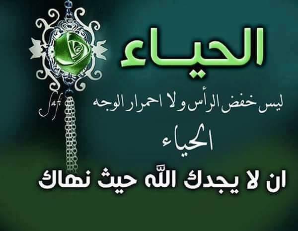 الصور الاسلامية  (1)