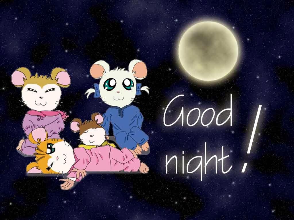 بالصور مساء الخير good night (1)