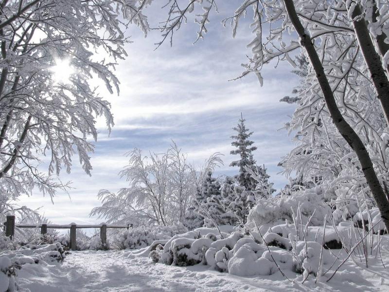 رمزيات وخلفيات عن الشتاء (1)