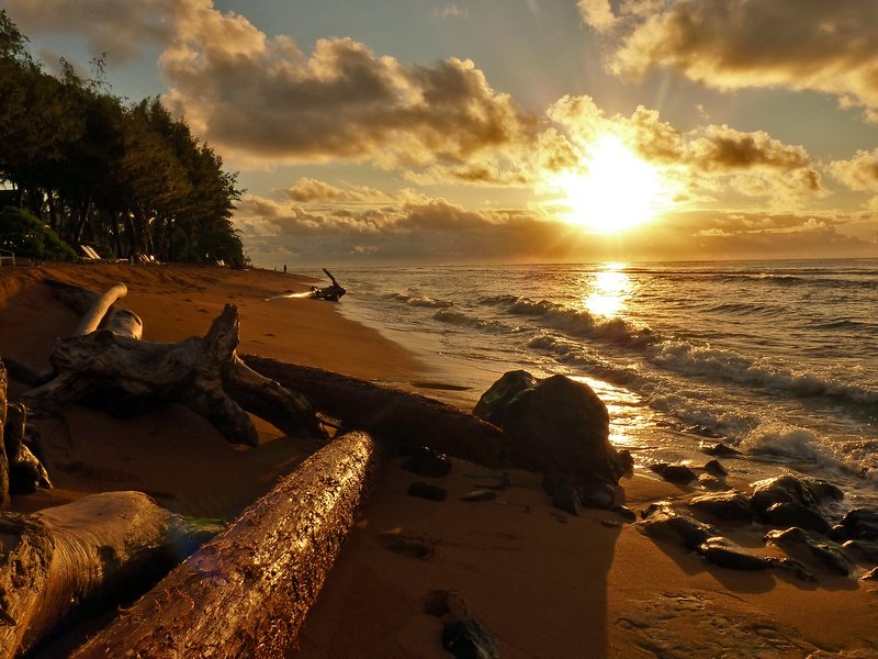 شروق الشمس بالصور (4)