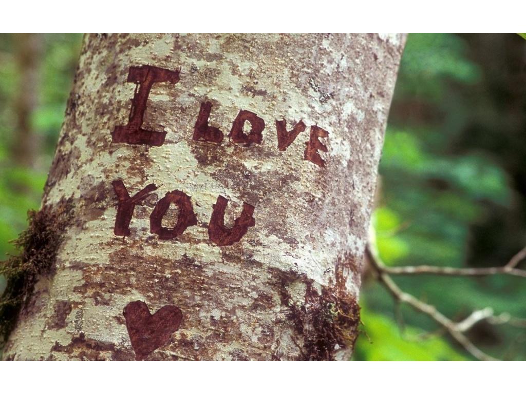 صور احبك جديدة (5)