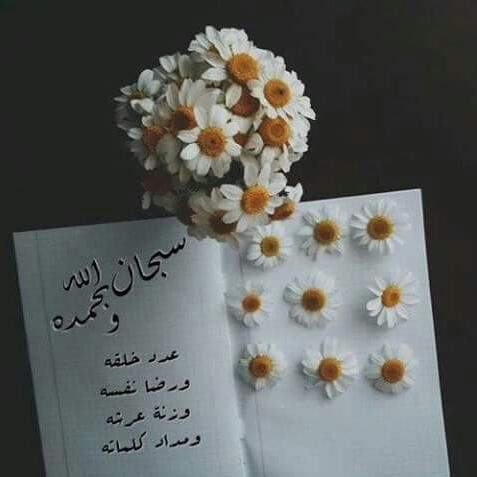 صور اسلاميه روعه  (2)
