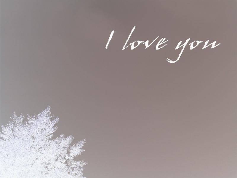 صور الحب (1)