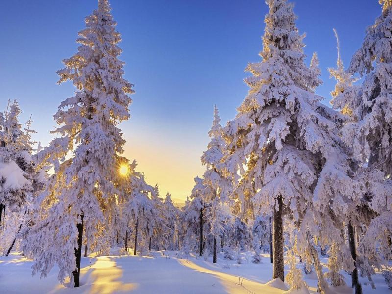 صور الشتاء (1)