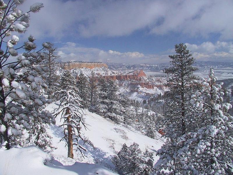 صور ثلوج الشتاء (1)