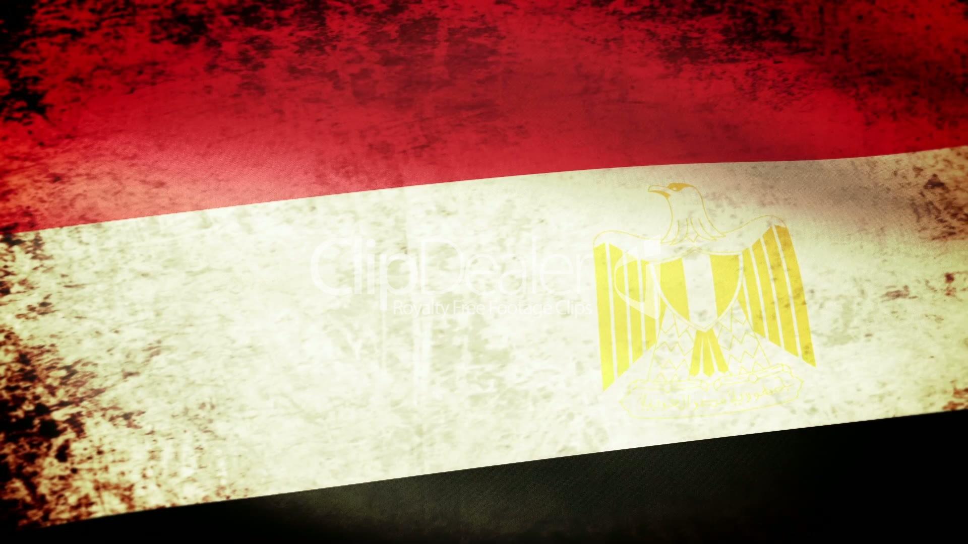 صور علم مصر (5)