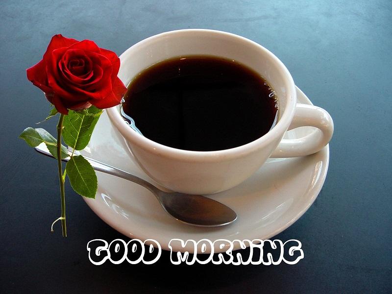 صور عن صباح الخير (3)