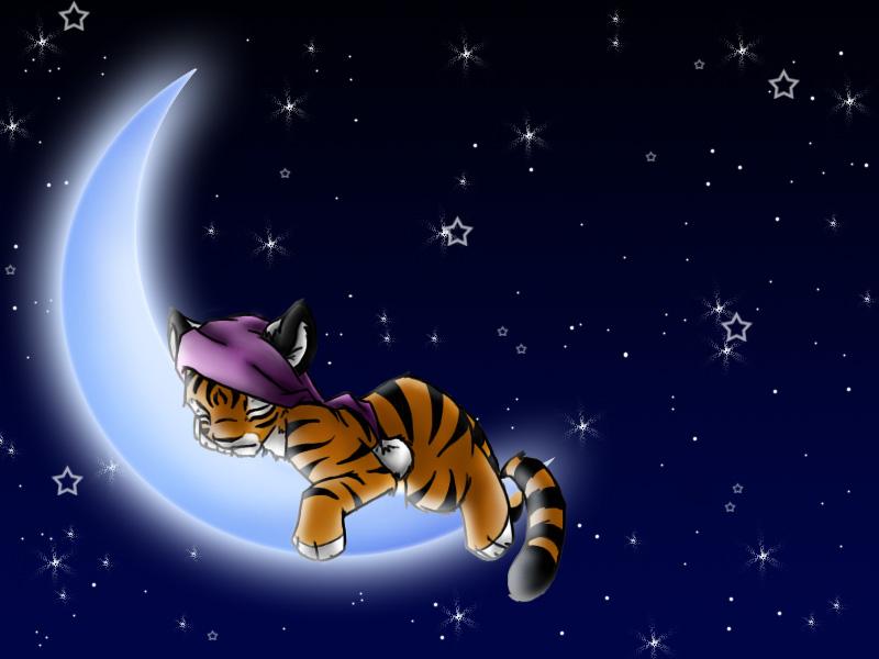 مساء الخير Good Night صور (1)