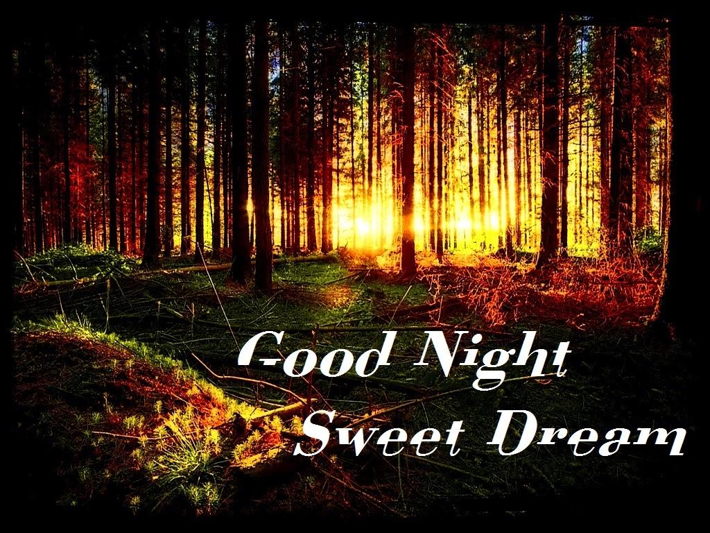 good night photos (6)