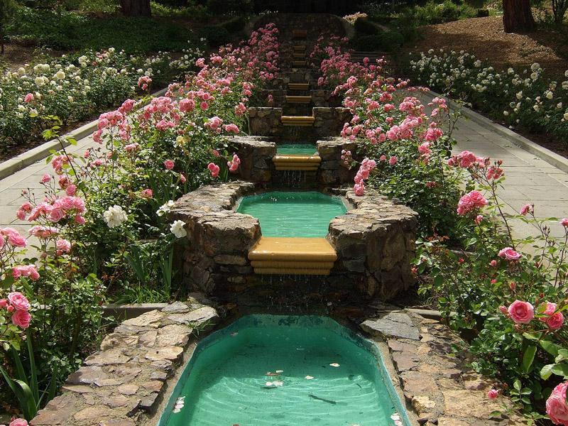اجمل حدائق منزلية (1)