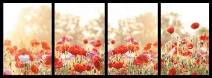 اجمل صور غلاف فيس بوك وتويتر 2016 بجودة HD (2)