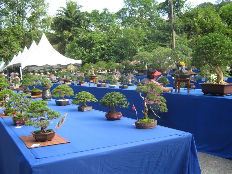 اماكن سياحية في ماليزيا (2)