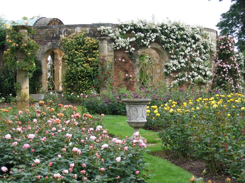حديقة (2)