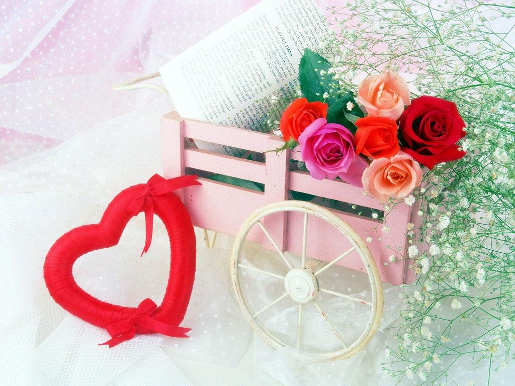 صور ازهار الحب  (2)