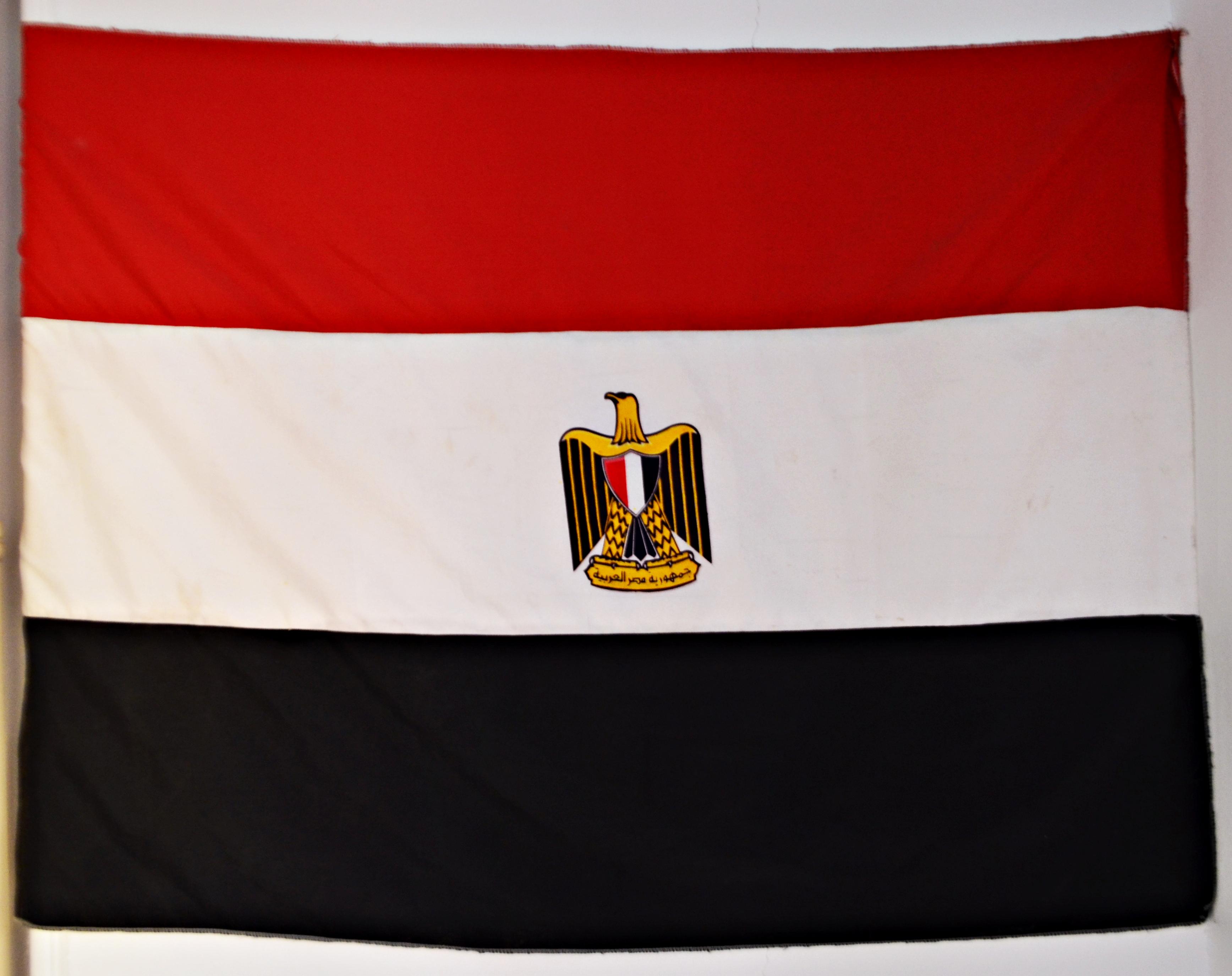 صور تصميمات علم مصر (1)