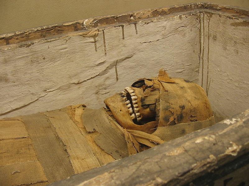 صور تعبر عن مصر (5)