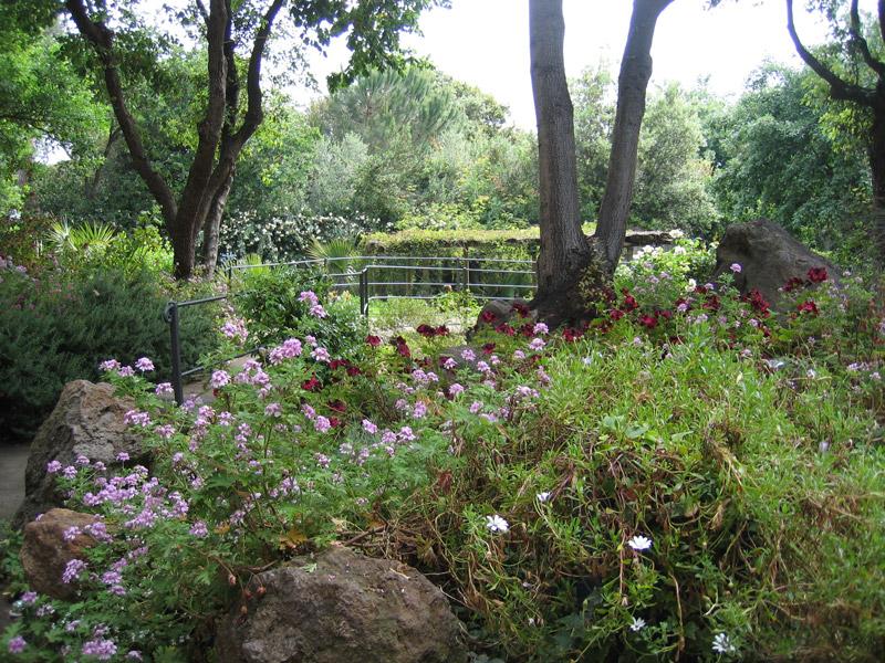 صور حدائق للبيوت (5)
