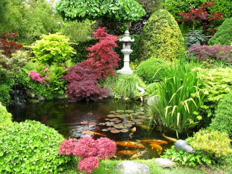 صور حديقة (3)
