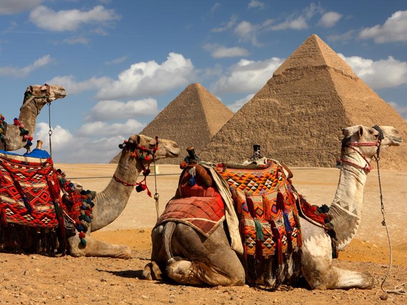 صور من مصر  (4)