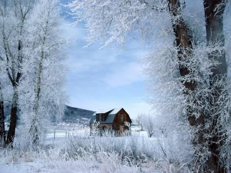 احلي خلفيات عن الشتاء 2016 (2)