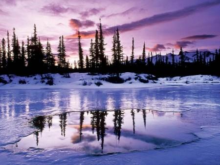 احلي خلفيات عن الشتاء 2016 (4)