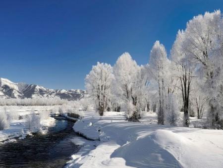 احلي خلفيات عن الشتاء 2016 (6)