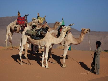 السياحة والاماكن السياحية المصرية (3)