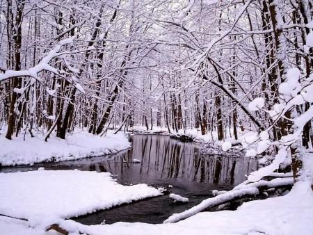 خلفيات عن الثلوج 2016 (2)