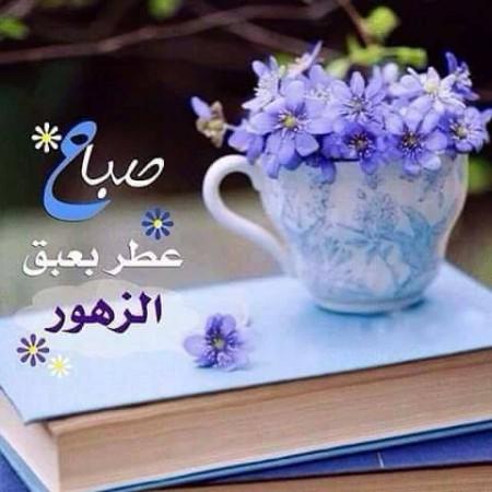 صورصباح الخير جميله  (2)