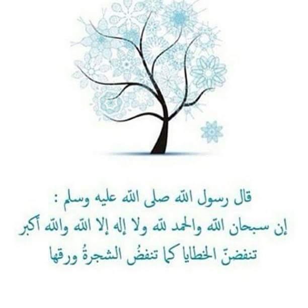صور فيس بوك (4)