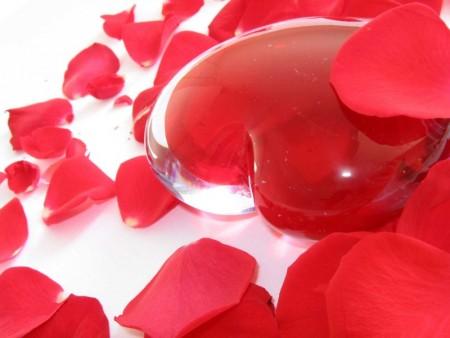 صور قلب احمر (4)