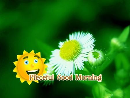 خلفيات صباح الخير (3)