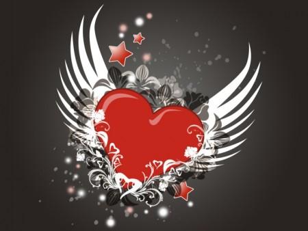 صور حب جديدة (3)