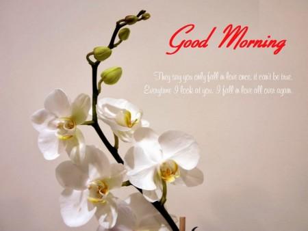 صور صباح الخير Good Morning (1)