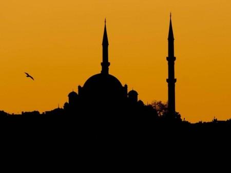 تصميم مسجد بالصور (1)