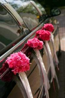 صور سيارة عريس  (1)