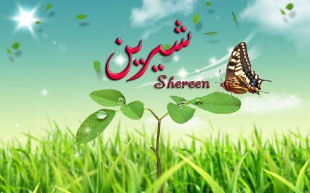 رمزيات اسم شيرين (1)