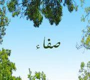 صور رمزية اسم صفاء (1)