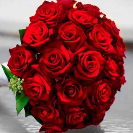 ورد احمر بالصور (3)
